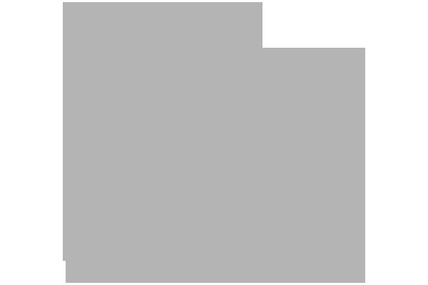 Customer Microlog Biennale di Venezia