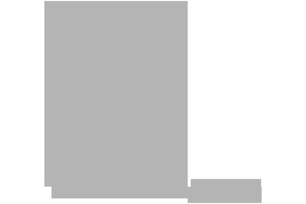 Customer Microlog Comune di Bologna