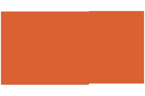 Customer Microlog Retail Coin