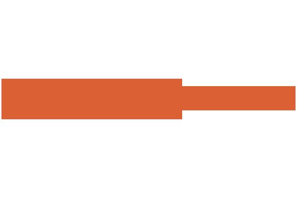 Customer Microlog Retail Mondadori