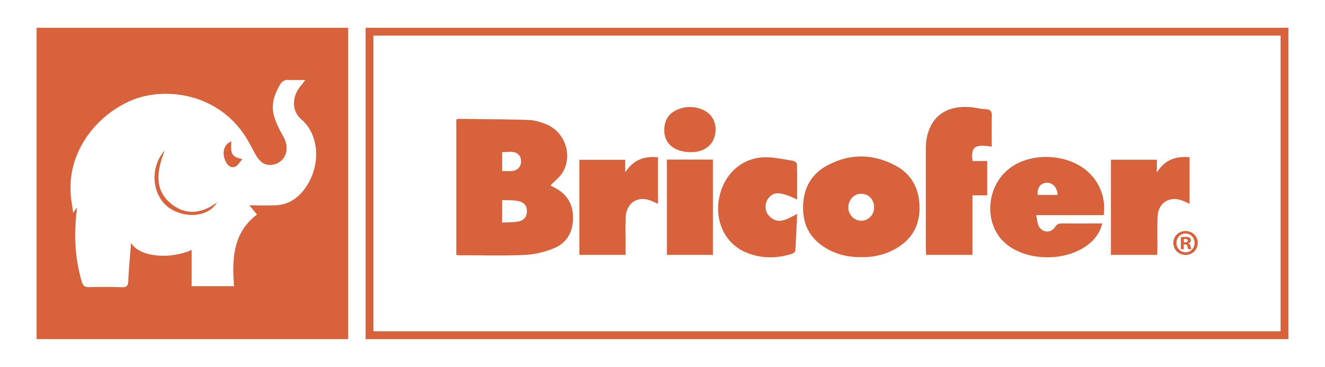Customer Microlog Retail Bricofer