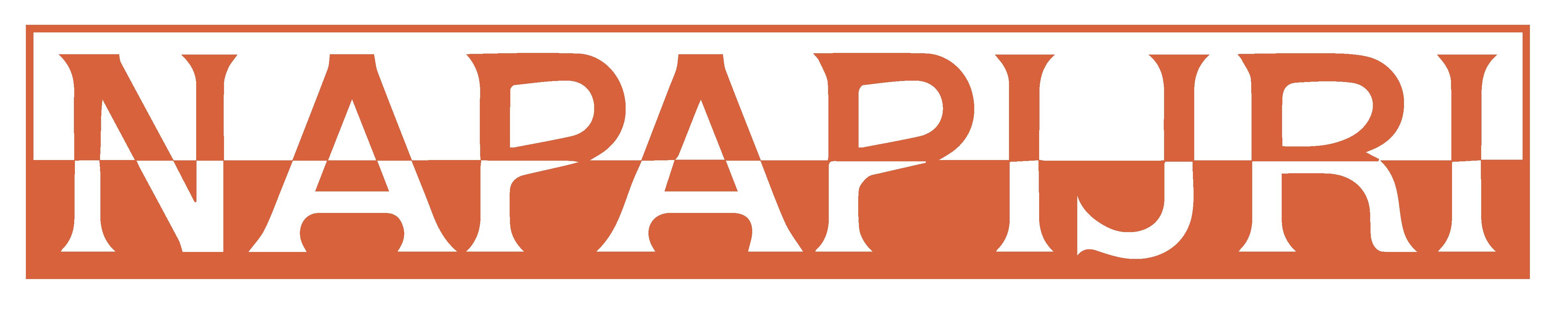 Customer Microlog Retail Napiapijri